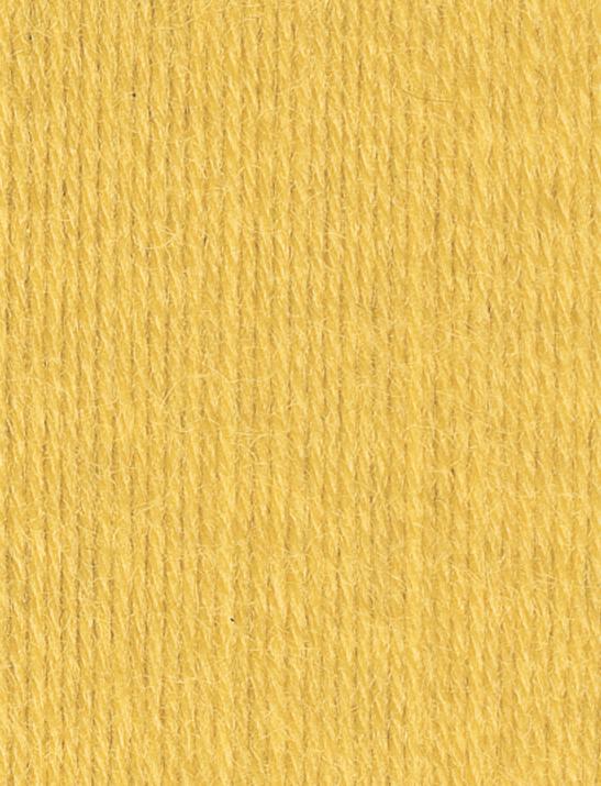 SMC Regia Uni 02041 yellow