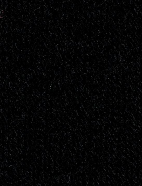 SMC Regia Uni 02066 black