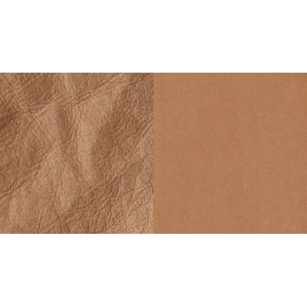 SnapPap bruin