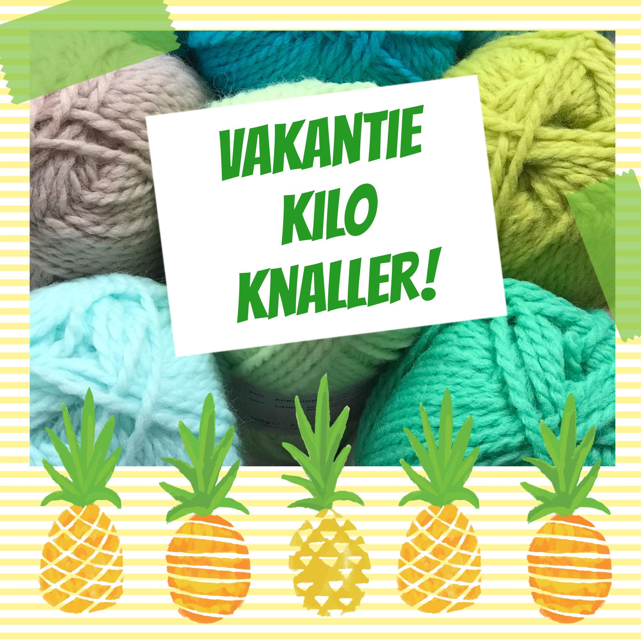 Vakantie Kilo Knaller Echtstudio